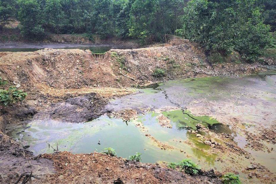 Hà Tĩnh: Dân nín thở vì trại lợn 'chất lượng cao' xả thải trực tiếp ra môi trường